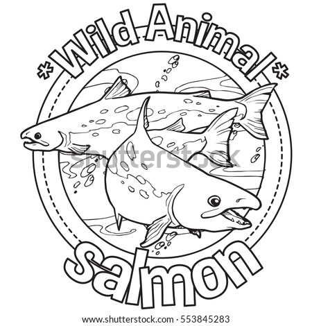 animal salmon coloring book