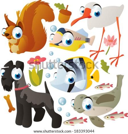 animal set: squirrel, fish, ibis, dog, seal - stock vector