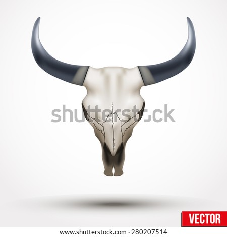 Animal skull with horns. Vector Illustration isolated on white background. Animal bones, animal skeleton, animal skull, skull bones, skull tattoos, bull skull, cow skull , skull horns.