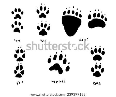 animal tracks - stock vector