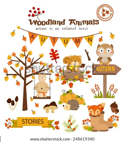 Animal Woodland Autumn Vector Set - stock vector