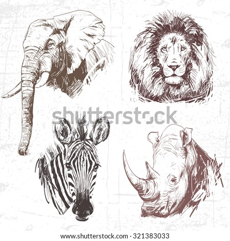 Animals around the World (Africa). Collection of hand drawn illustrations (originals, no tracing). Description: Each drawing comprise of one color