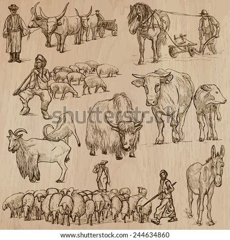 Animals around the World (part 25 - FARM ANIMALS). Collection of an hand drawn vector illustrations. Each drawing comprise of two or three layers, the colored background is isolated. Easy editable. - stock vector