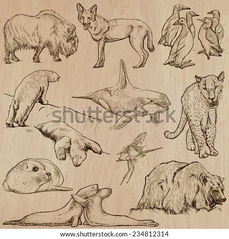 Animals around the World (part 22). Pack of an hand drawn vector illustrations. Each drawing comprise of two or three layers of lines, the colored background is isolated. Editable in group and layers. - stock vector