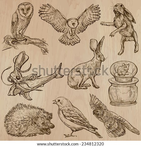 Animals around the World (part 17). Pack of an hand drawn vector illustrations. Each drawing comprise of two or three layers of lines, the colored background is isolated. Editable in group and layers. - stock vector