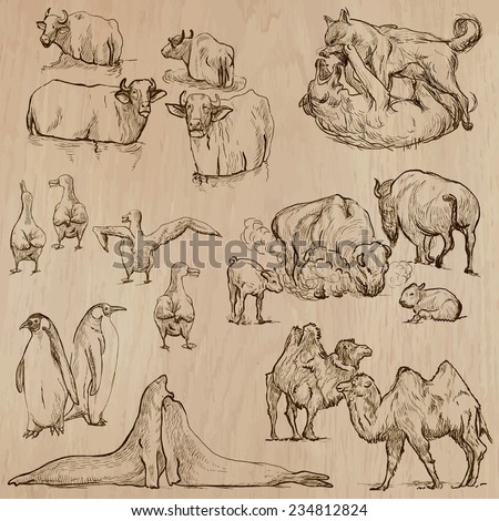 Animals around the World (part 20). Pack of an hand drawn vector illustrations. Each drawing comprise of two or three layers of lines, the colored background is isolated. Editable in group and layers. - stock vector