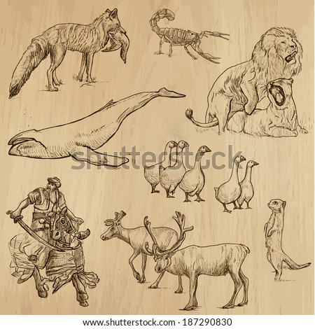 Animals around the World (set no. 12) - Collection of an hand drawn illustrations. Description: Each drawing comprise of two layer of outlines, colored background is isolated. - stock vector