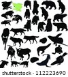 animals bears, seals, frogs, goats, wolves, dogs, Jerzy - stock vector