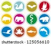 animals icons buttons (animal icons set, animal icons collection, animal buttons, eagle, bird, elephant, snake, bear, dolphin, swan, bat, buffalo, stork, frog, shark carp fish) - stock vector