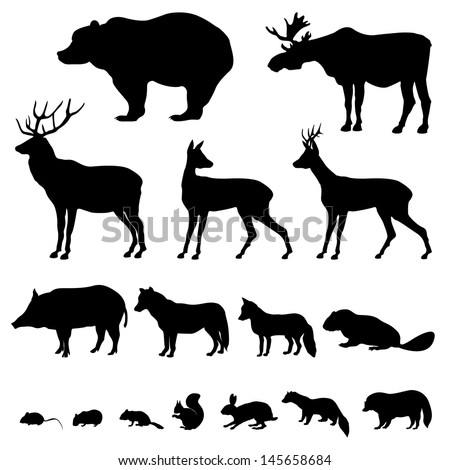 Animals living in european forest. Vector icon set of silhouette. - stock vector