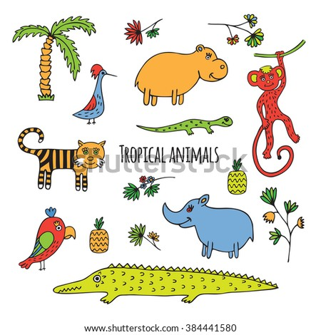 Animals of the rainforest. Sketch hand-drawn on a white background. - stock vector