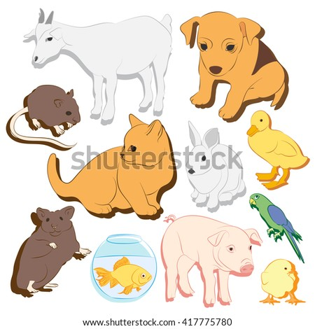 Animals pets vector colorful icons set. Illustrations of various domestic - dog, cat, parrot, fish, pig, bunny and other - stock vector