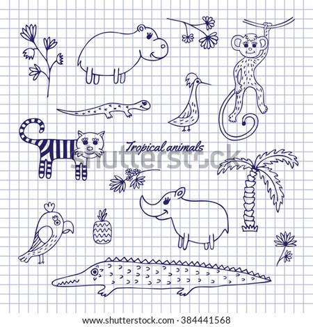 Animals, plants and birds of the rainforest drawn on notebook sheet. Sketch pen - stock vector