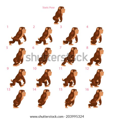 Animation of gorilla walking. Sixteen walking frames + 1 static pose. Vector cartoon isolated character/frames. - stock vector