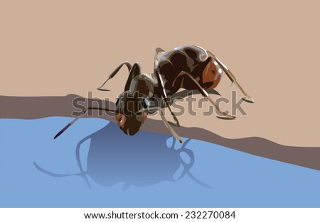 Ant Drinking Water Clip Art