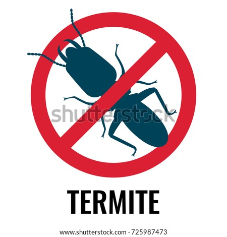 Termite Stock Images Royalty Free Images Amp Vectors