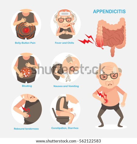 appendicitis stock images, royalty-free images & vectors, Human Body