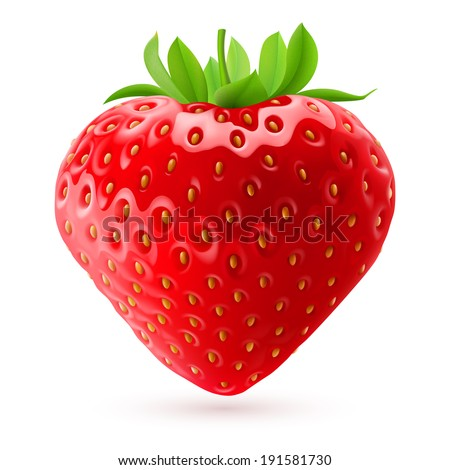 Appetizing fresh strawberry isolated on white background. Realistic illustration - stock vector