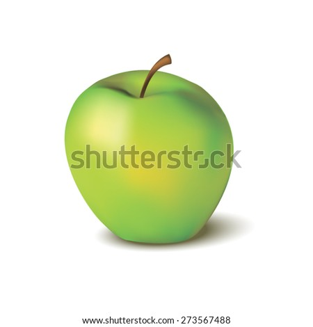 apple - stock vector