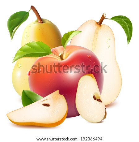 Apple and pears with slices, green leaves and drops of water. Photo-realistic vector illustration.