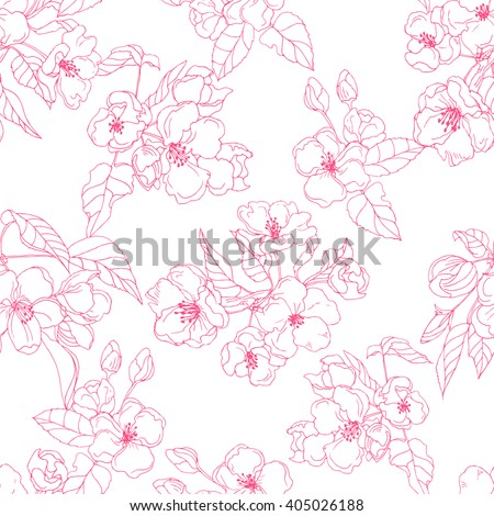 Apple flower in blossom; botanical vector Illustration; contour seamless pattern of spring flowers on white background; cherry pink blooming flowers - stock vector
