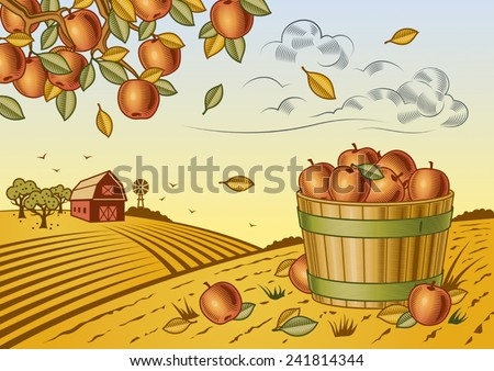 Apple harvest landscape. Fully editable vector illustration with clipping mask. - stock vector