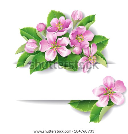 Apple tree blossom with space for text.