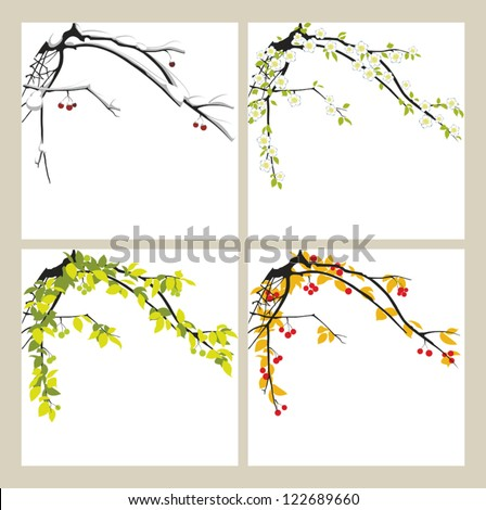 Apple-tree in the winter, in the spring, in the summer and in the autumn. - stock vector