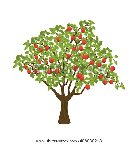 Apple tree with red apples. Isolated vector illustration on white background. - stock vector