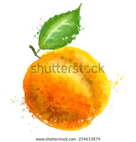 Apricot vector logo design template. Peach or fruit icon. - stock vector