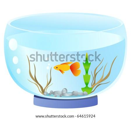 aquarium - stock vector