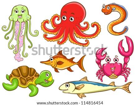aquatic animals in the sea - stock vector