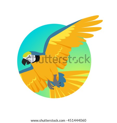 Ara parrot vector. Birds of Amazonian forests in flat design illustration. Fauna of South America. Flying colorful Ara parrot for icons, posters, childrens books illustrating. Isolated on white. - stock vector