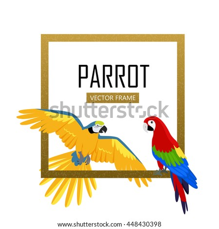 Ara parrot vector frame. Birds of Amazonian forests in flat design isolated on white. - stock vector