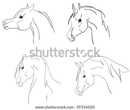 arab horses heads. sketch - stock vector