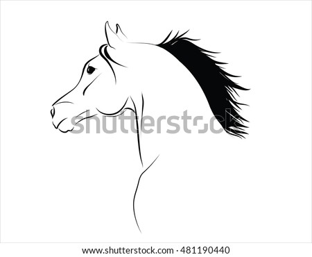 Arabian horse head with flying mane vector illustration