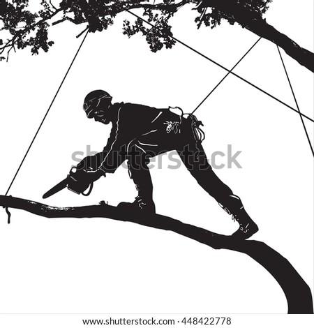 Arborist Stock Photos, Royalty-Free Images & Vectors ...