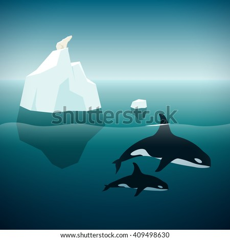 Arctic nature. Vector illustration of the polar bear, orcas, iceberg and ocean. - stock vector