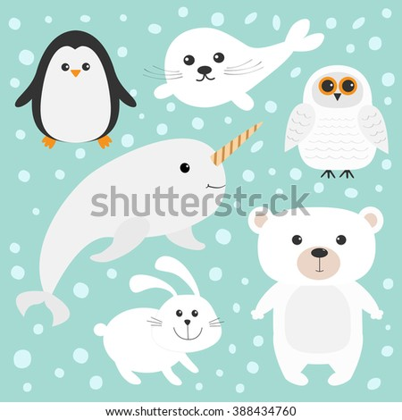 Arctic polar animal set. White bear, owl, penguin, Seal pup baby harp hare rabbit narwhal unicorn-fish. Kids education cards. Blue background with snow flake Isolated. Flat design. Vector illustration - stock vector