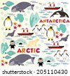 Arctic vs Antarctica - stock vector
