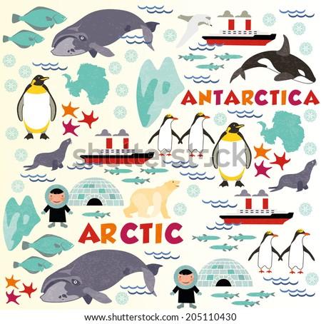 Arctic vs Antarctica - stock vector