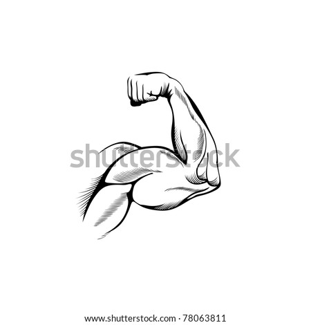 Arm muscles (sketch mans hand on white) - stock vector
