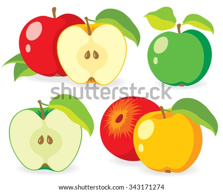 Assorted apples of various color, set of vector illustrations - stock vector