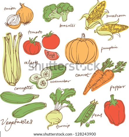 Assorted vegetable vector illustration - stock vector