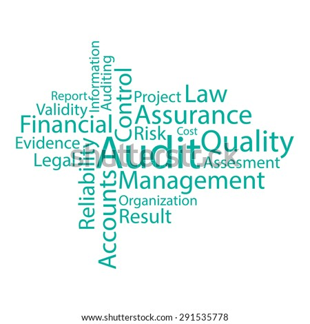 Audit related words tag cloud for business projects. Isolated over white illustration made in vector. - stock vector