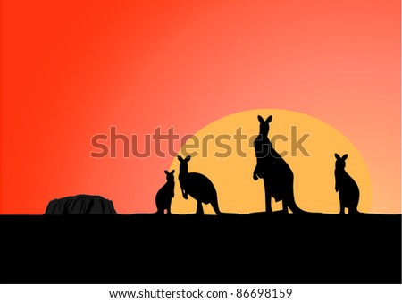 Australia view at early morning with standing kangaroo