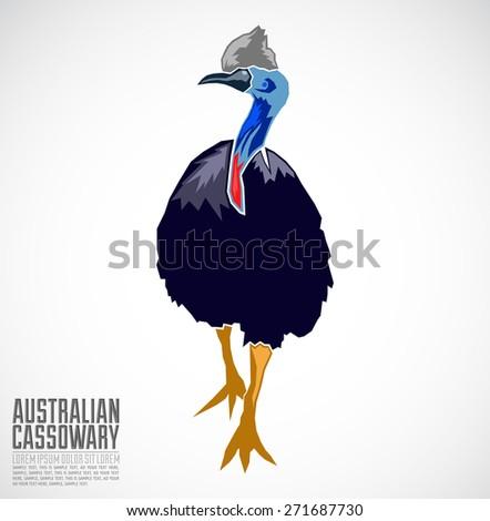 Australian Cassowary Vector illustration - stock vector