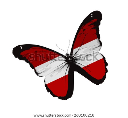 Austrian flag butterfly, isolated on white - stock vector