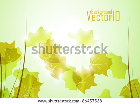 Autumn background, colorful environment leaf, season poster eps10 - stock vector