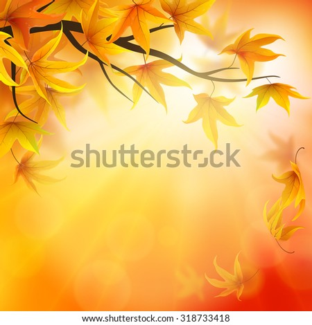 Autumn background with branch and falling maple leaves - stock vector